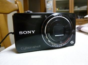 P1090081.JPG